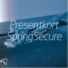 Giftcard SpringSecure